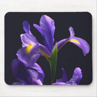 Awsome, purple Iris Mouse Pad