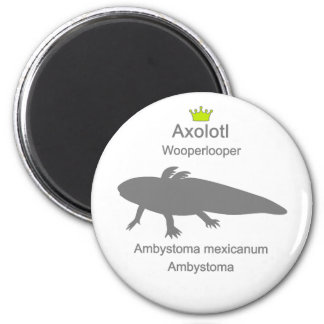 Axolotl g5 6 cm round magnet