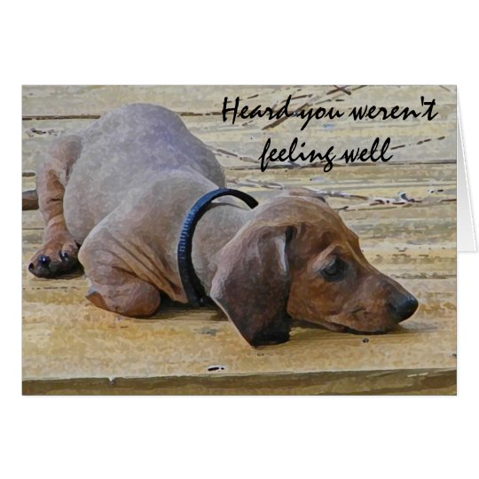 AY- Funny Dachsund Puppy Dog Get Well Card