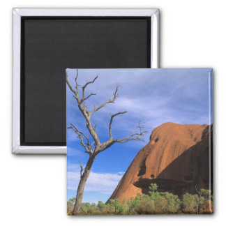 Ayers Rock Uluru in the Outback Australia Magnet