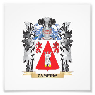 Aymeric Coat of Arms - Family Crest Art Photo