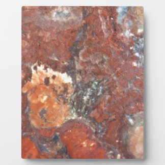 AZ Petrified Wood Plaque