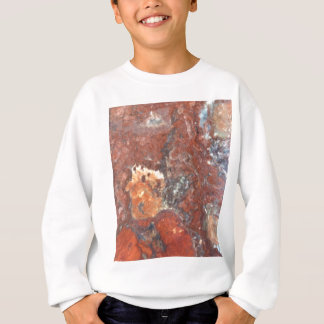AZ Petrified Wood Sweatshirt