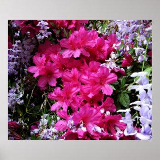 azalea  and wisteria poster