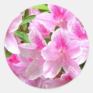 Azalea Blooms Sticker