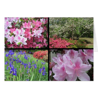 azalea dogwood iris collage note card