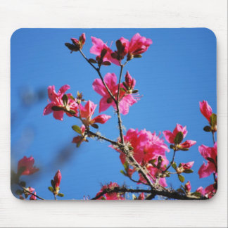 Azalea flower and meaning mouse pad