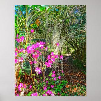 Azalea Path Bok Tower Gardens Lake Wales Florida Poster