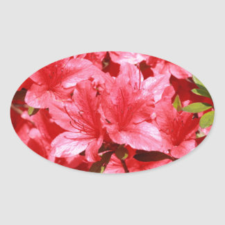 azalea red flowers oval sticker