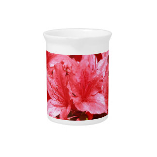 azalea red flowers pitcher