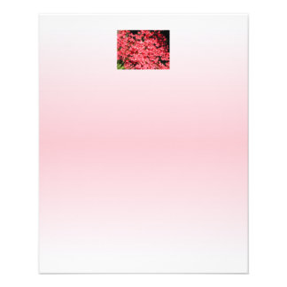 Azaleas. Pretty Pink Flowers. 11.5 Cm X 14 Cm Flyer