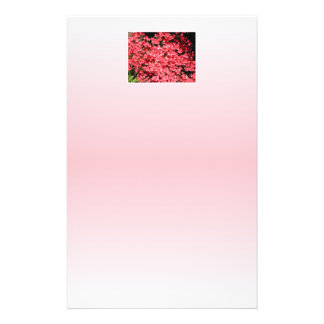 Azaleas. Pretty Pink Flowers. 14 Cm X 21.5 Cm Flyer