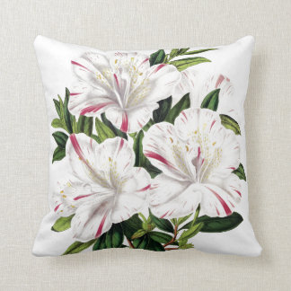Azaleas vintage illustration cushion