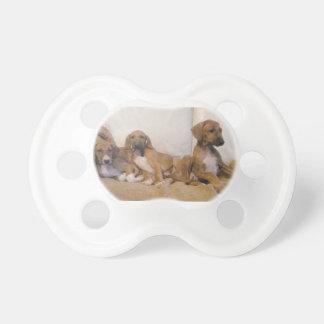 Azawakh Puppies Baby Pacifiers