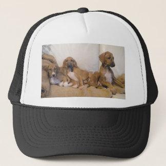 Azawakh Puppies Trucker Hat