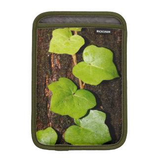 Azores endemic hedera iPad mini sleeve