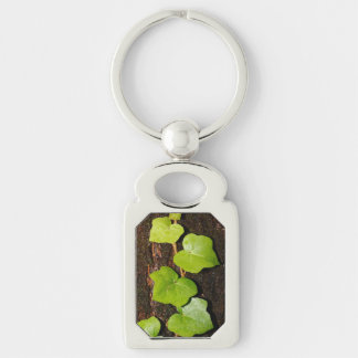 Azores endemic hedera key ring