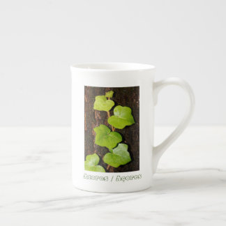 Azores endemic hedera tea cup
