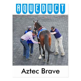 Aztec Brave Postcard