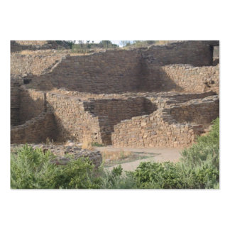 aztec ruins new mexico brick structure pack of chubby business cards