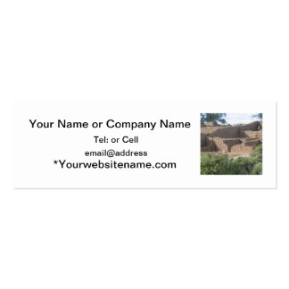 aztec ruins new mexico brick structure pack of skinny business cards