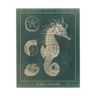 Azure Seahorse Study I Wood Print