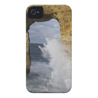 Azure Window Case-Mate iPhone 4 Case