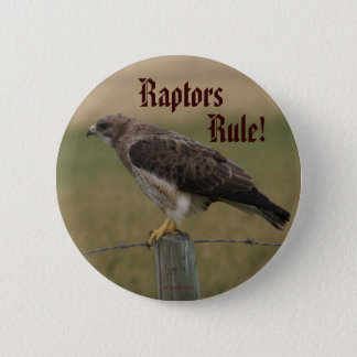 B0010 Swainson's Hawk 6 Cm Round Badge