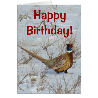 B0022 Ring-necked Pheasant Greeting Card