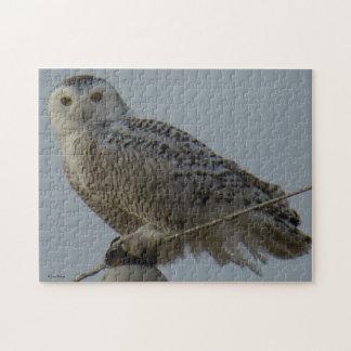 B0038 Snowy Owl Jigsaw Puzzle