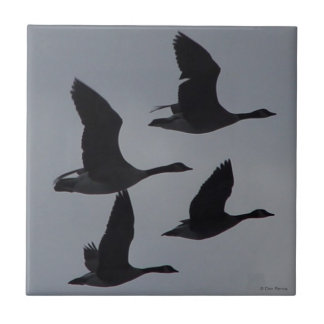 B0046 Canadian Geese in Flight Ceramic Tile