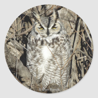 B0051 Great Horned Owl Classic Round Sticker