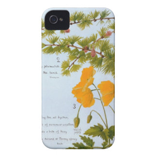B iPhone 4 Case Nature Journal Flora & Fauna 1