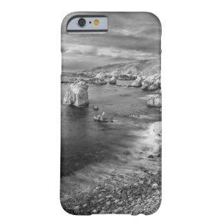 B&W beach coastline, California Barely There iPhone 6 Case