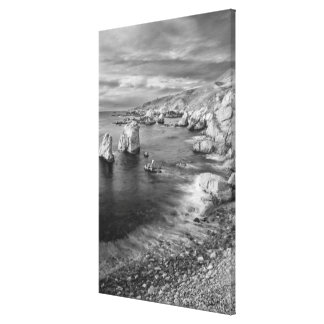 B&W beach coastline, California Canvas Print