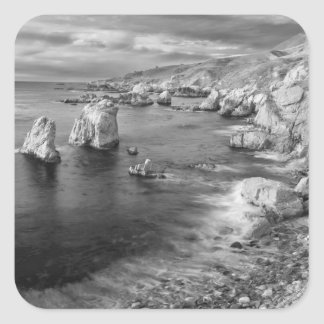 B&W beach coastline, California Square Sticker