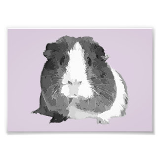 B&W 'Betty' Guinea Pig Print (Frames Available!) Photographic Print