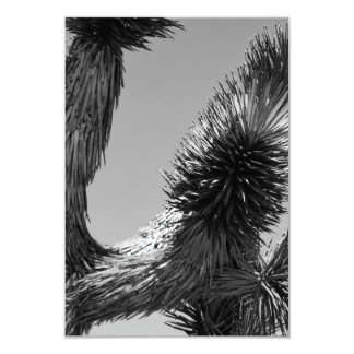 B&W Joshua Tree National Park 4 9 Cm X 13 Cm Invitation Card