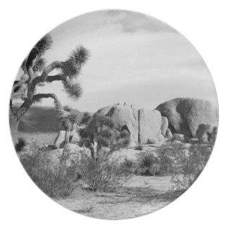 B&W Joshua Tree National Park Plates