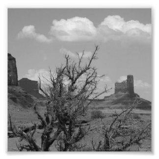 B&W Monument Valley in Arizona/Utah 3 Photo Print