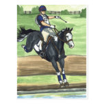 B&W Paint Horse XC into water Eventing Post Cards