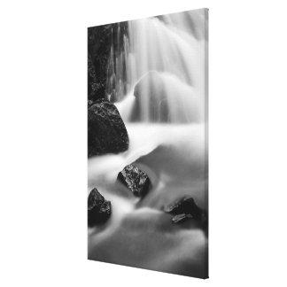 B&W waterfall, California Canvas Print