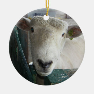 BAAAAAAAAAAAA SHEEP ORNAMENT