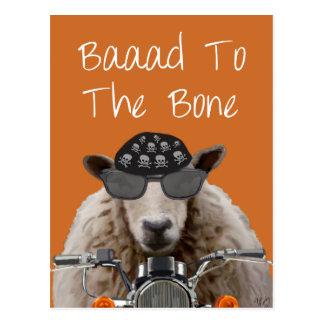 Baaad To the Bone 2 Postcard