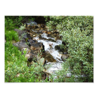 Babbling brook photo