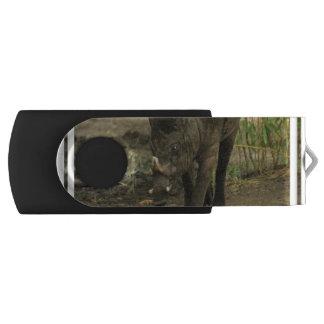 Babirusa Swivel USB 2.0 Flash Drive