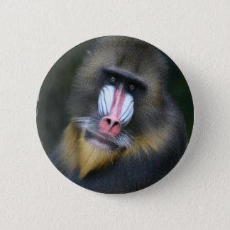 Baboon Face Round Button