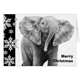 Baby African Elephant Christmas Card