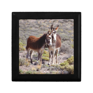 Baby and Mama Burro Gift Box