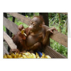 Baby Animal Banana Picnic Card